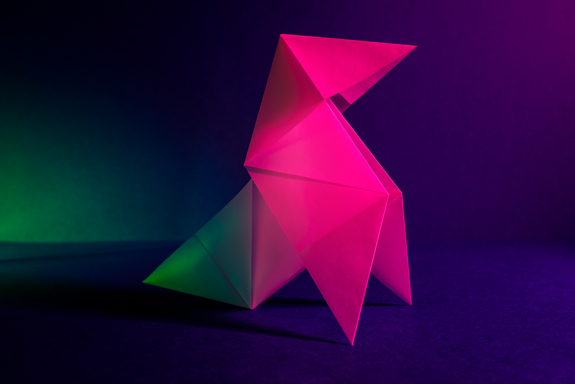 Photographie d'origami en studio à Lille (59)